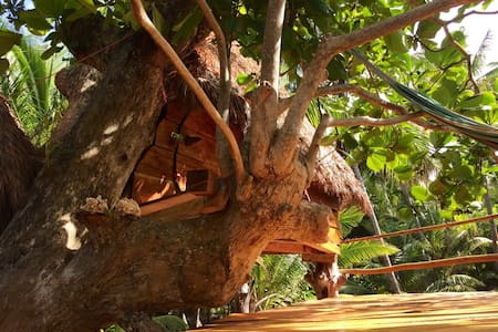 ENSUEÑOS. TreeHouse 2. Little Corn Island