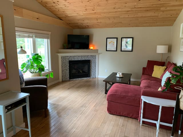 Cozy living room with pull-out queen-size couch, fireplace, TV, and DVD player