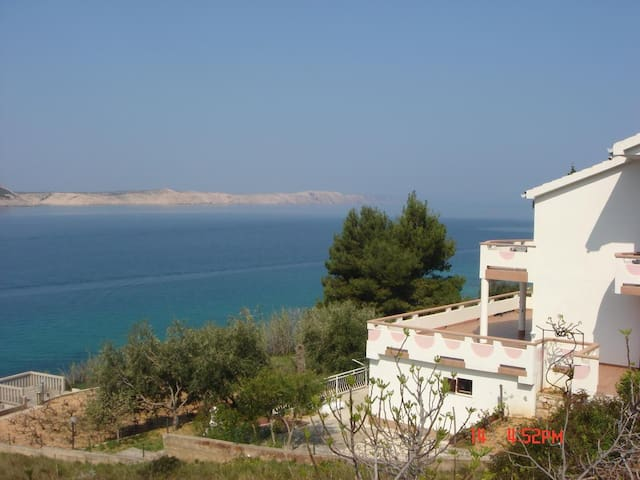 One bedroom apartment near beach Stara Novalja, Pag (A-13938-a)
