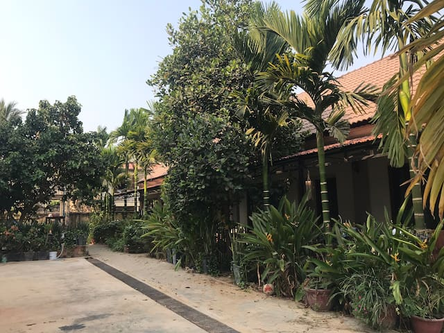 Suite Apartment & Bungalow in Siem Reap