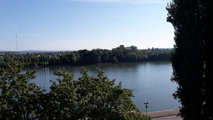 Apartment with Rhein view