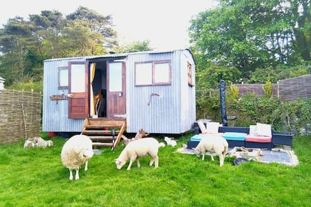 BRAND NEW Shepherds Hut, in a peaceful setting