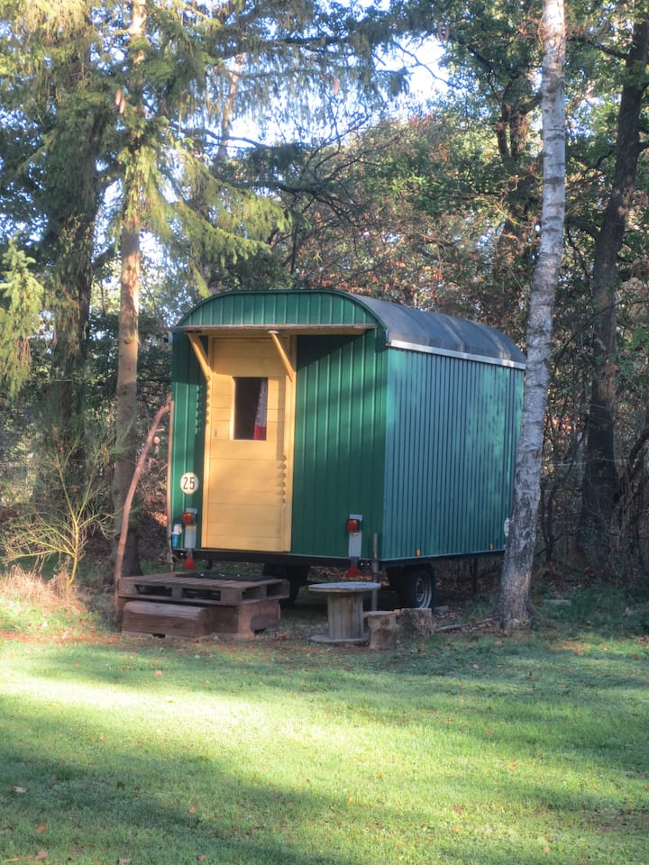 Camping Wesertal - cabin in the forest for 2