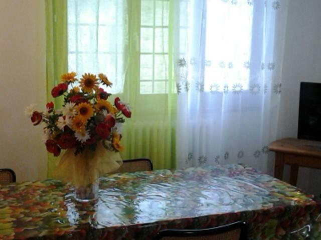 PODERE FANTECHI S.MARTINO - Pontassieve - Lägenhet