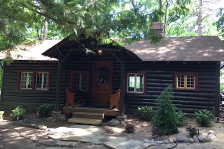 Little Fox Hollow; a Charming Log Cabin w/Pontoon!