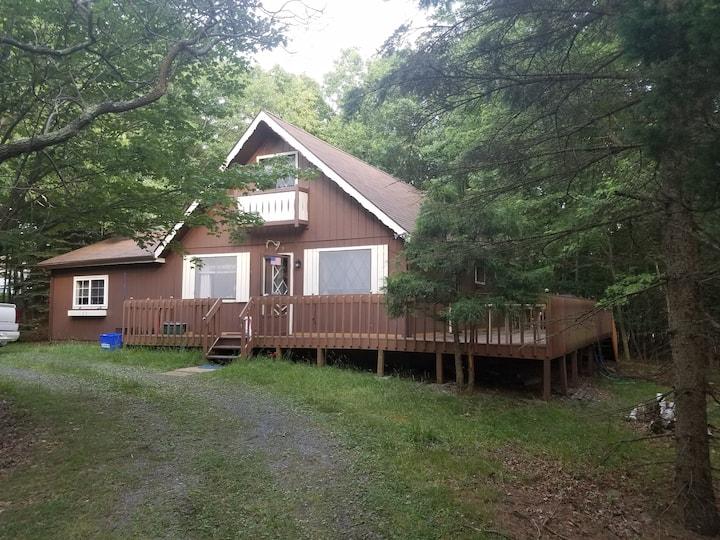 Cozy cabin in Indian mountain Lake. Pet friendly!