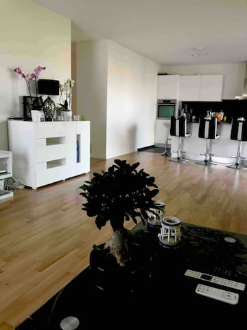 Grand et jolie apt, spacious and cosy flat