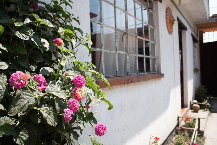 Departamento(A), cocineta, jardín asador y terraza