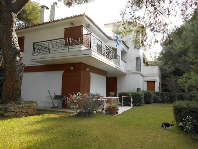 LUXURIOUS HOUSE IN PENTELI (20 min/ Airport) - Penteli - Casa