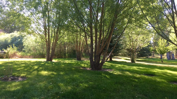 RV Park in Mackay ID-Grass covered park w/ hookups
