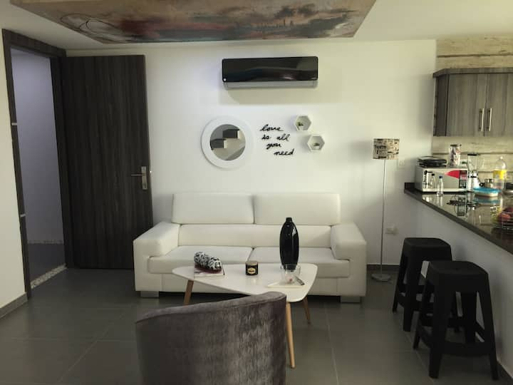 New And Modern Duplex Apartment  for rent