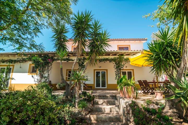 Casa Figueirinhas - Beautiful Garden, BBQ and WIFI