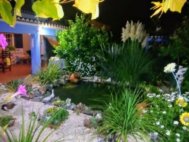 Refúgio do sapo Rogil Aljezur Costa Vicentina