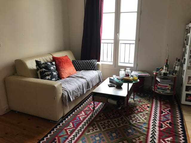 A cosy appartement in paris
