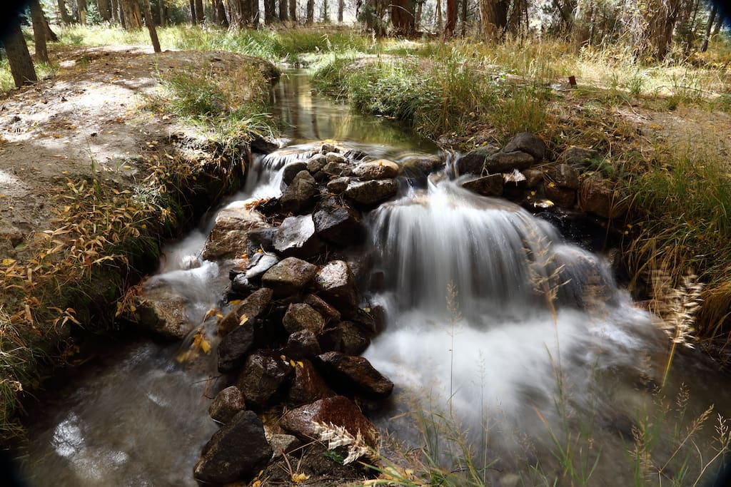 Stream and waterfalls on property