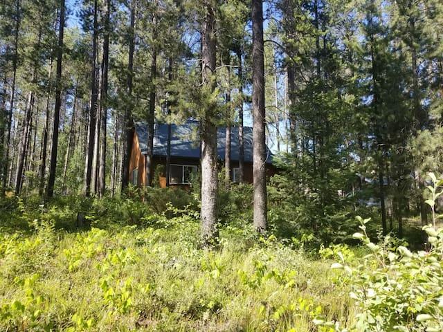 Cabin near Glacier Park