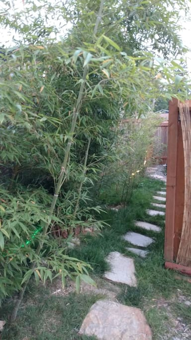 Bamboo path is your private entrance into this hidden gem