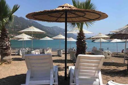 Begonya 2 plaja yürüyüş ile 5 dk Tisan Öztaş Apart
