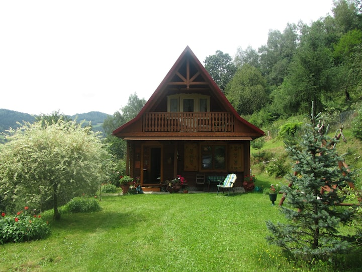 Domek drewniany do wynajecia Zabrzeż (k. Łącka)