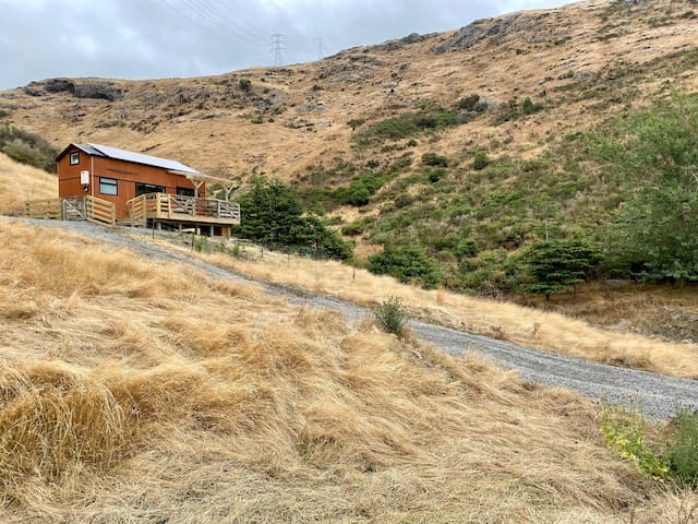 The Tiny Tussock