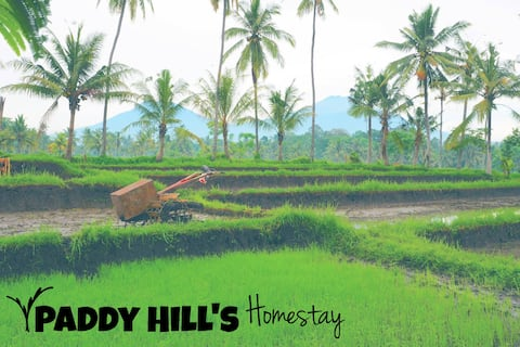 Paddy Hills Homestay bed&bfast