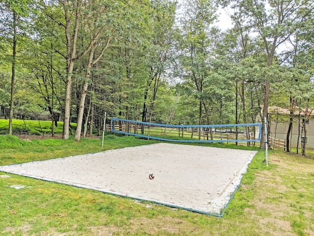 PRIVATE Volleyball Court & In-Home Air Purifier!