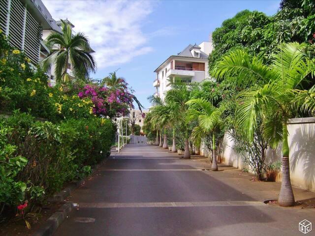 L'escale des palmiers