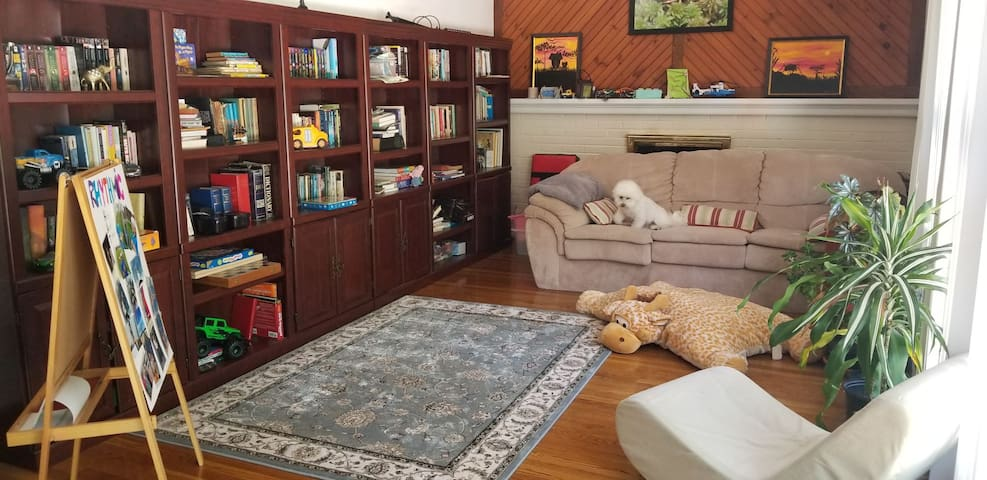 Family room with lots of books and games for all ages