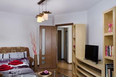 Lovely Room In The Center of Bucharest!!! - București - Διαμέρισμα
