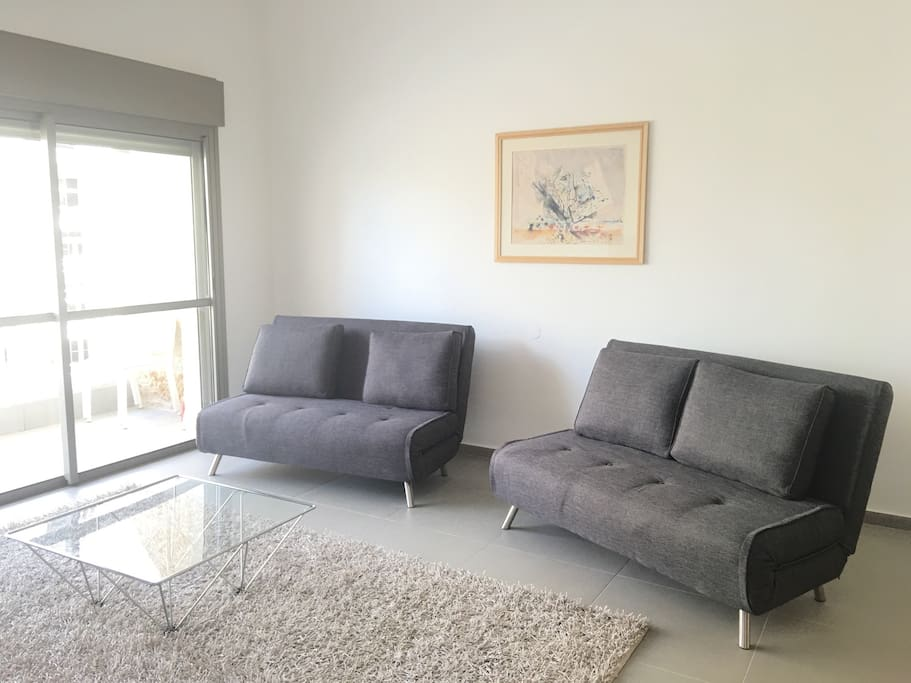 Comfy pullout sofas