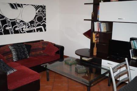 petit maison des artes - Torino - Apartment
