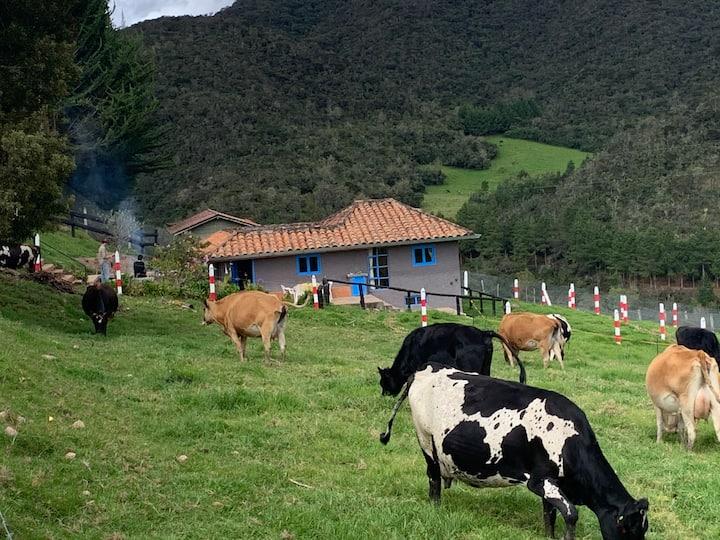 La casita de campo de Totorillas