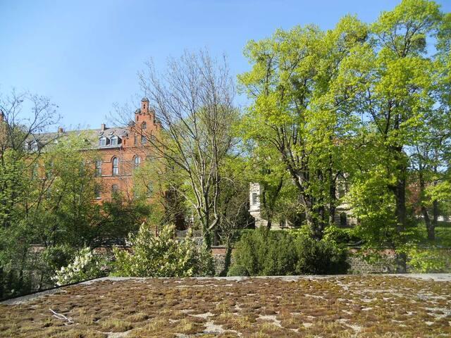 green view/nice garden - my home in Vienna