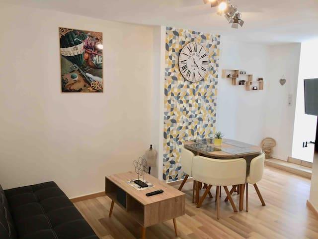 Appartement VINTAGE au centre ville d'Epernay