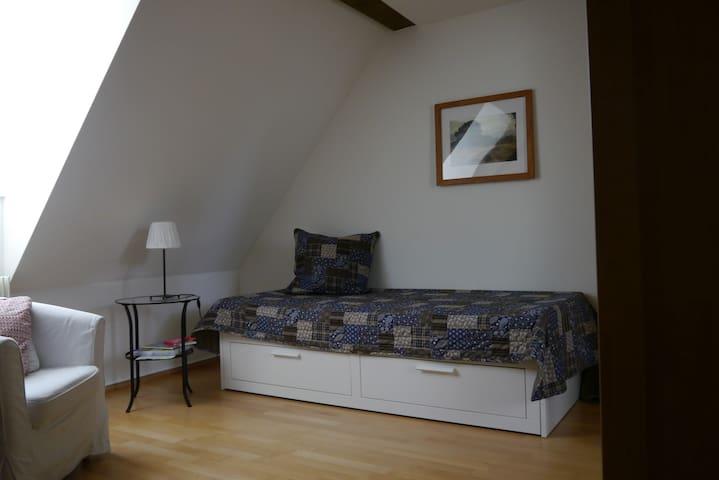 modernes Zimmer im Fachwerkhaus - Münchenstein - Leilighet
