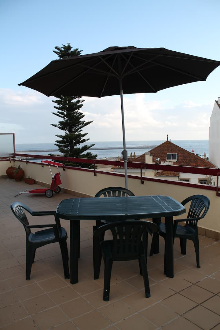 Cozy apartment with large terrace nearby the beach