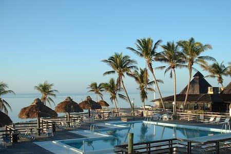 Caloosa Cove Resort & Marina (STUDIO) - Islamorada