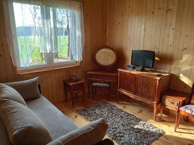 Sypialnia retro na dole z rozkładaną sofą.