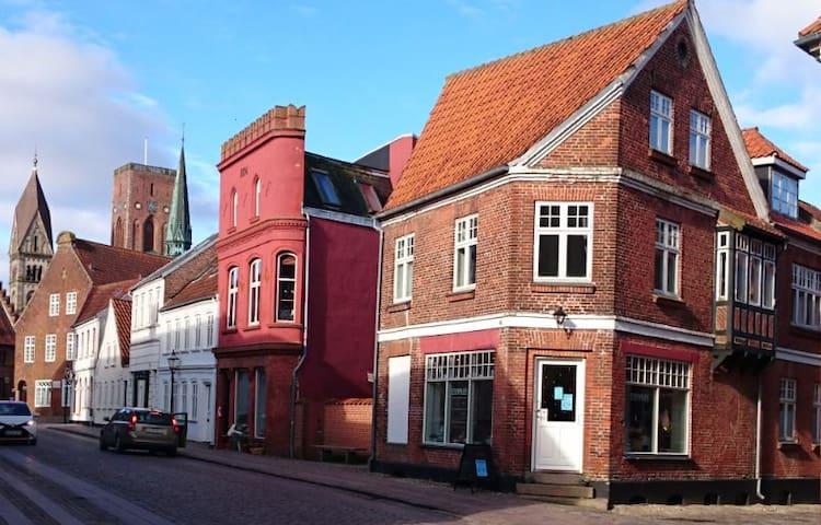 Centralt i den ældste bydel, Dagmarsgade - D