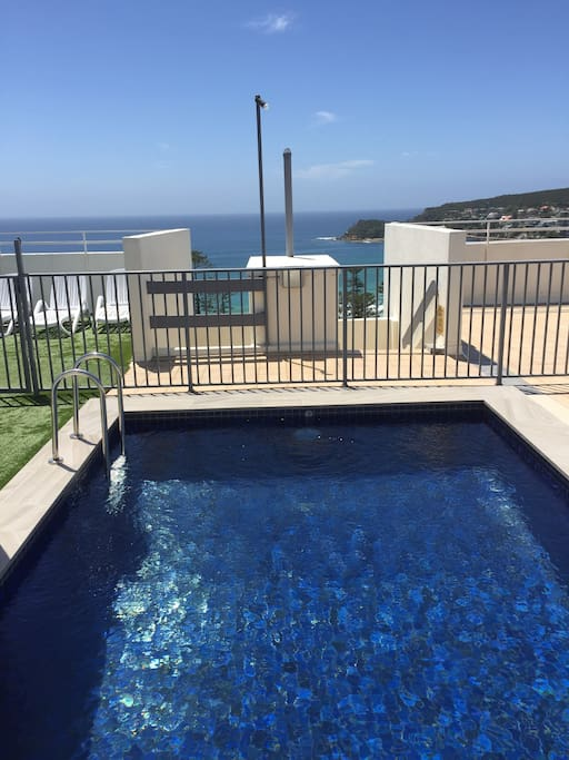 Common roof top plunge pool