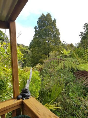 View from tree walkway outside upstairs door