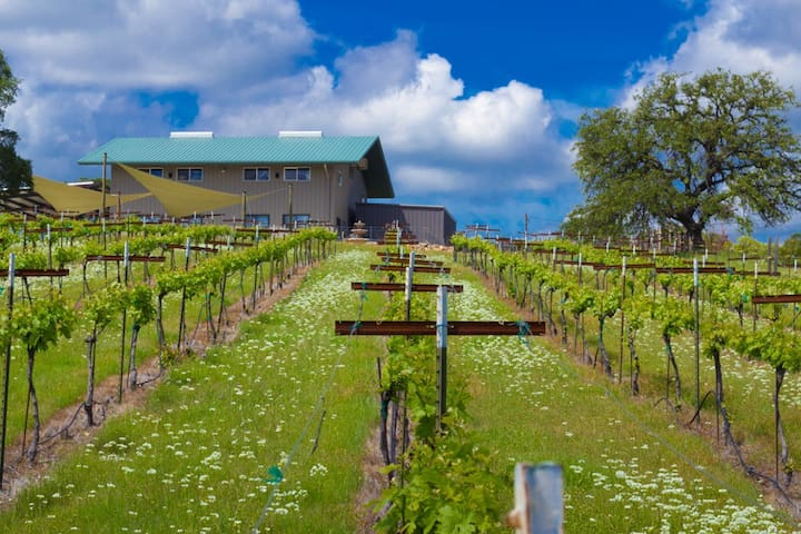 Bangor Home with Vineyards Views