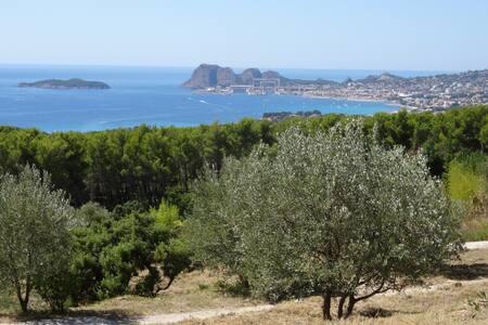 L'Olivandière: logis de charme, hauts de La Ciotat - La Ciotat