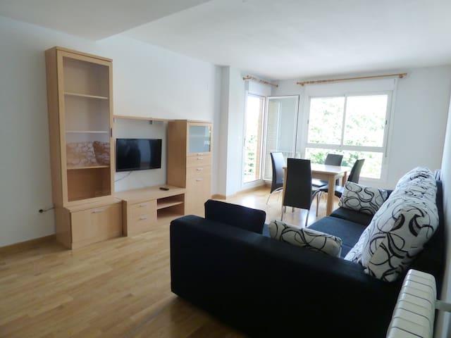 Amplio y soleado apartamento en Jaca - Jaca - Lejlighed