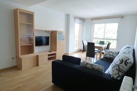 Amplio y soleado apartamento en Jaca - Jaca
