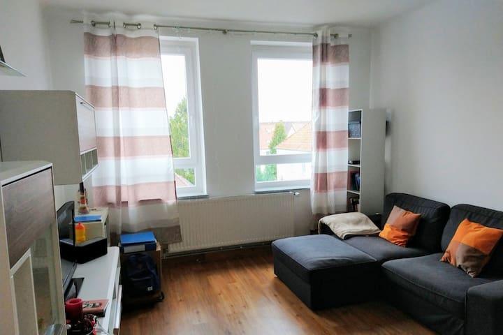 Wohnzimmer mit einem Schlafsofa