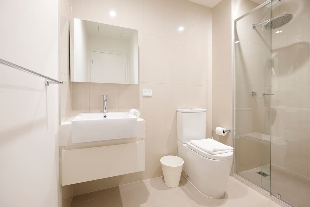 Modern and clean bathroom with toiletries including soap and shampoo.