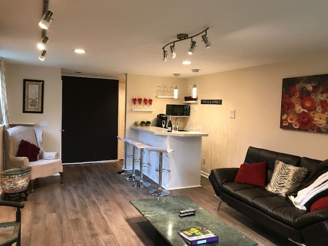 Family Room and Bar Area