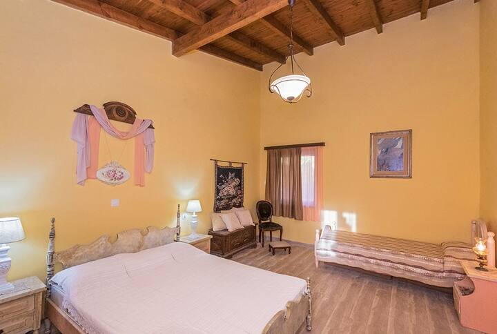 Villa Feakia - Strandnahe Familiäre Villa in Agios Gordios an der Westküste