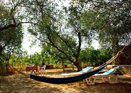 Olive Cottage - Chalikounas
